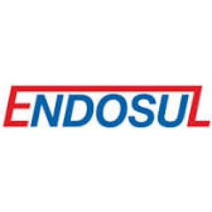 Endosul